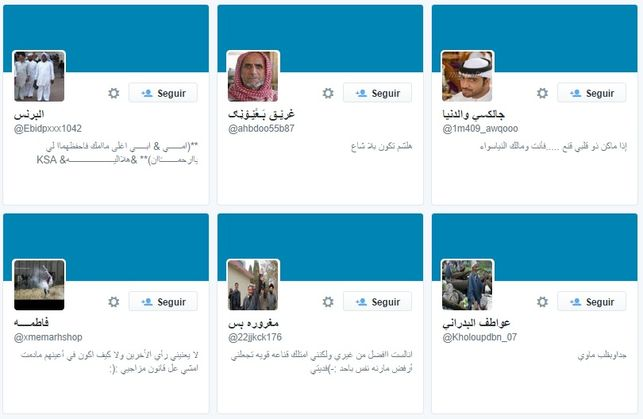 Falsos seguidores en Twitter