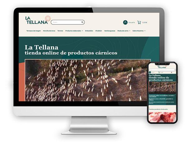 monitor latellana Diseño Web